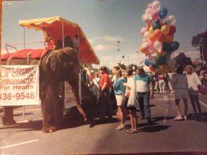 elephant-balloons