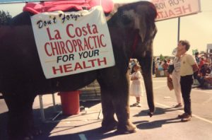 La Costa Chiropractic Elephant